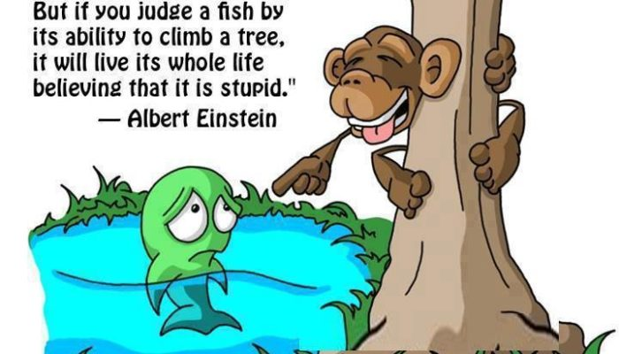 If You Judge A Fish……